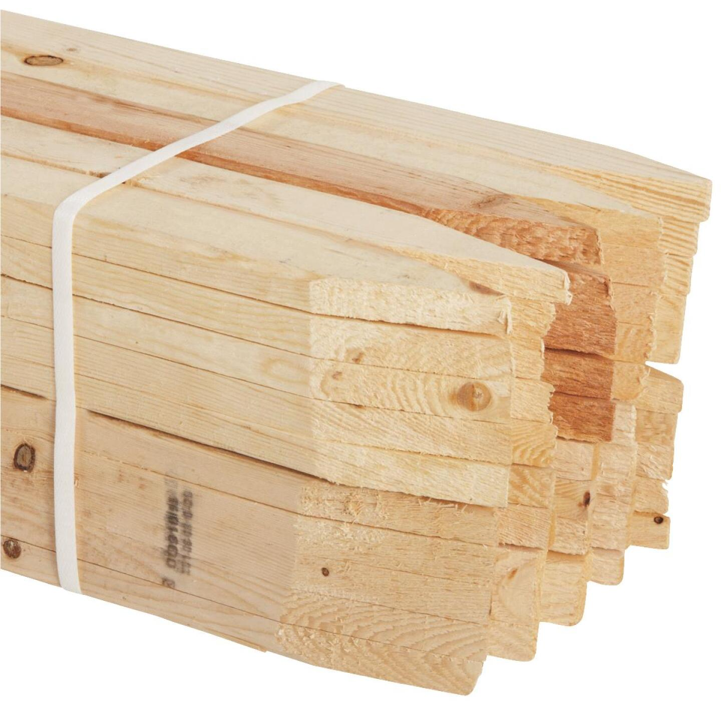 Kitzmans 3/8 In. x 1-1/2 In. x 48 In. Lath Stake (50-Pack) Image 1