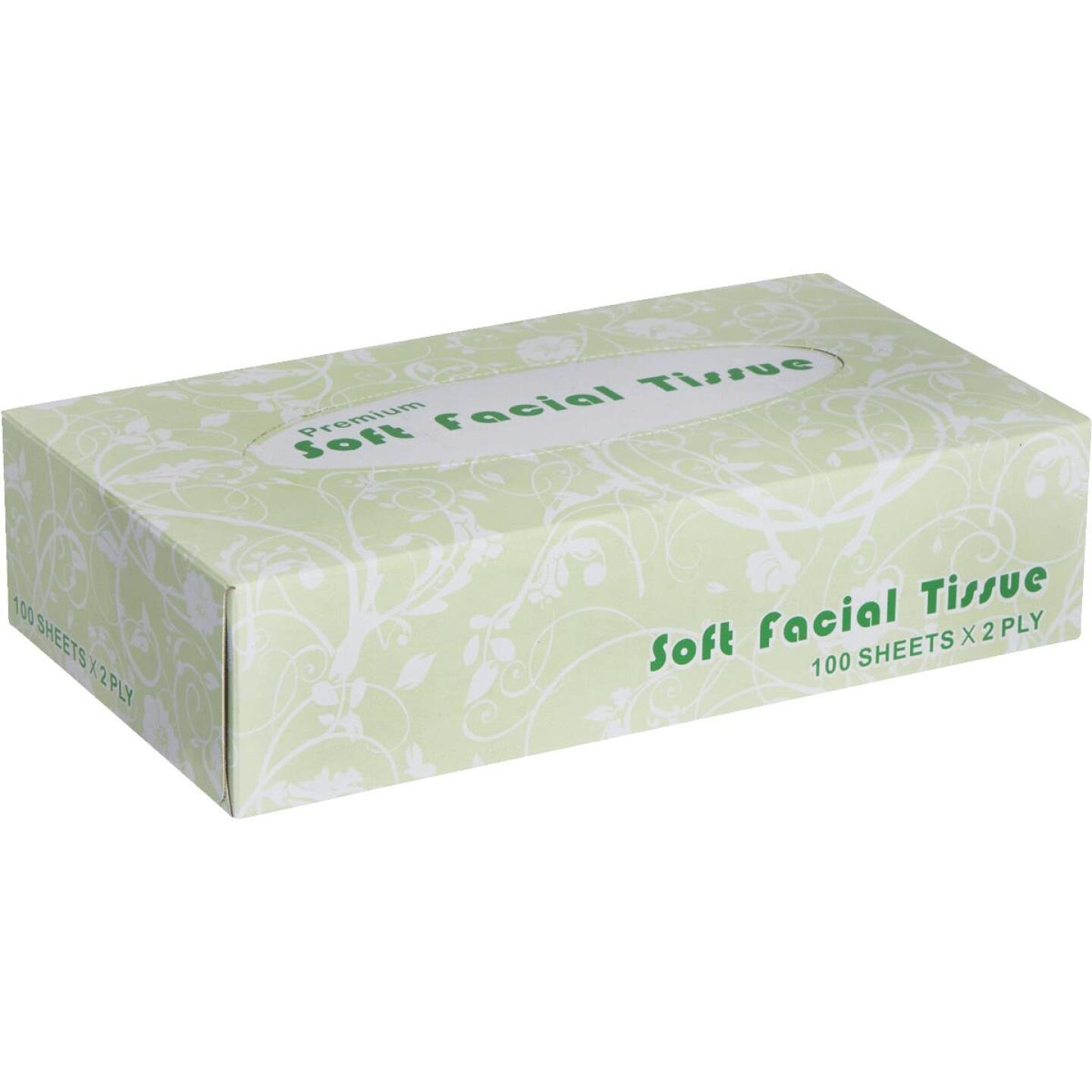 Windsoft 100 Count 2-Ply White Facial Tissue Image 1